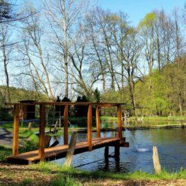 Teichangeln am 19.11 an Holly's Ranch – Nur für Mitglieder